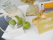 Bridal Expo 2009 Vol.2