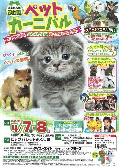 東北最大級のペットイベント『ペットカーニバル』に出店します!